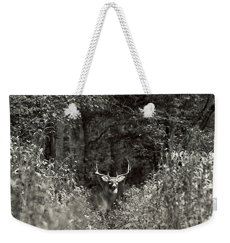 Black And White Weekender Tote Bag featuring the photograph A Big Buck In Rut by John Harmon