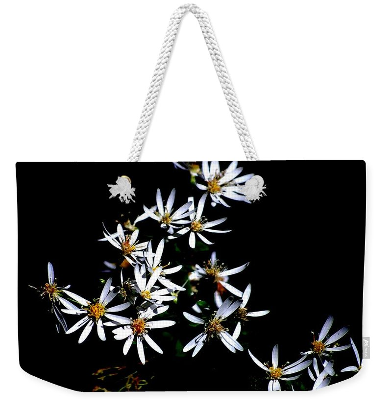 Digital Photograph Weekender Tote Bag featuring the photograph A Black And White Study by David Lane