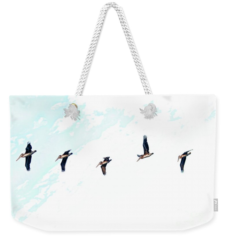 Birds Weekender Tote Bag featuring the photograph A Bright Fight by Blake Richards