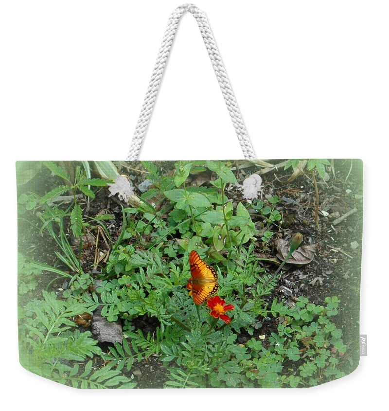 Flowers Weekender Tote Bag featuring the photograph A Butterfly In The Garden by Teresa Stallings