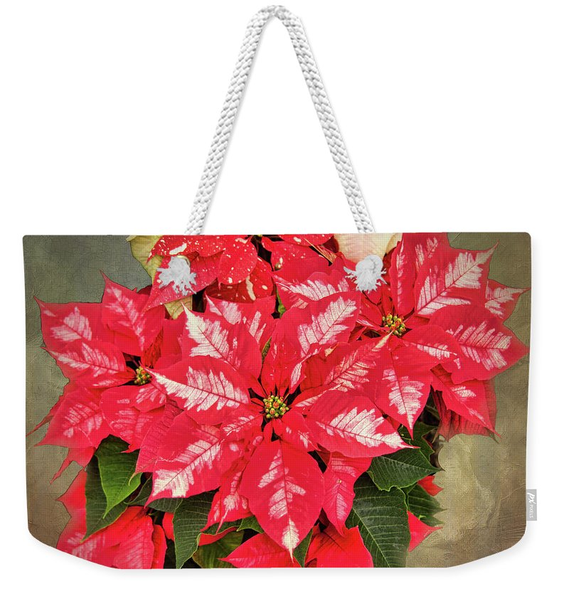 A Christmas Flower Weekender Tote Bag featuring the photograph A Christmas Flower by Phyllis Taylor