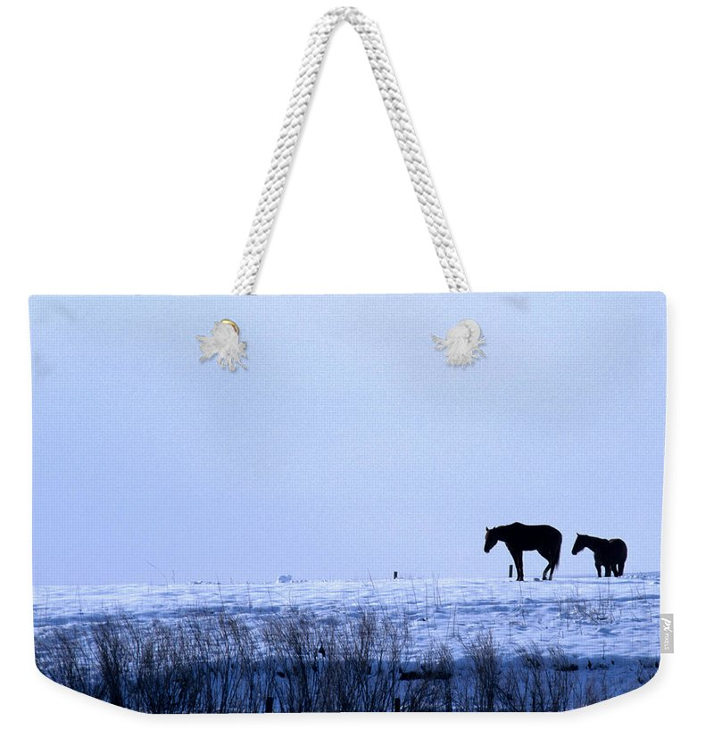 Horses Weekender Tote Bag featuring the photograph A Cold Winter by Jerry McElroy