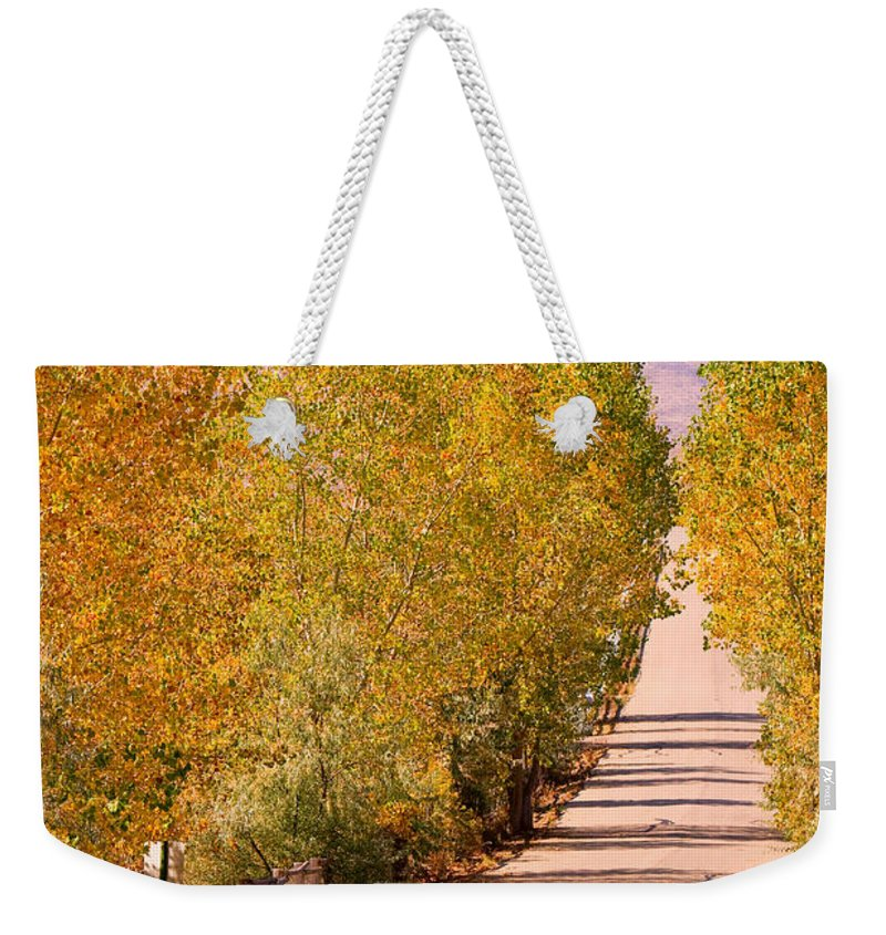 Rockymountains Weekender Tote Bag featuring the photograph A Colorful Country Road Rocky Mountain Autumn View by James BO Insogna