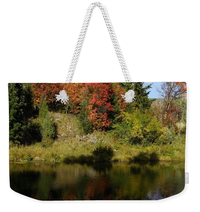 Nature Weekender Tote Bag featuring the photograph A Colorful Reflection by DeeLon Merritt