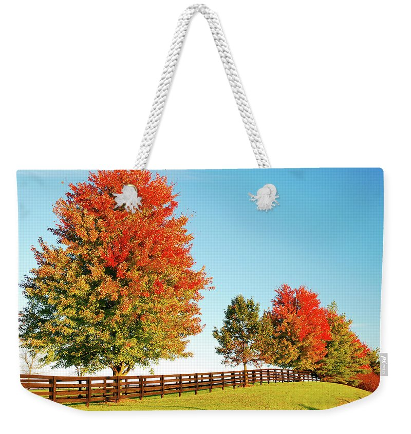 Lexington Weekender Tote Bag featuring the photograph A Country Autumn by James Kirkikis