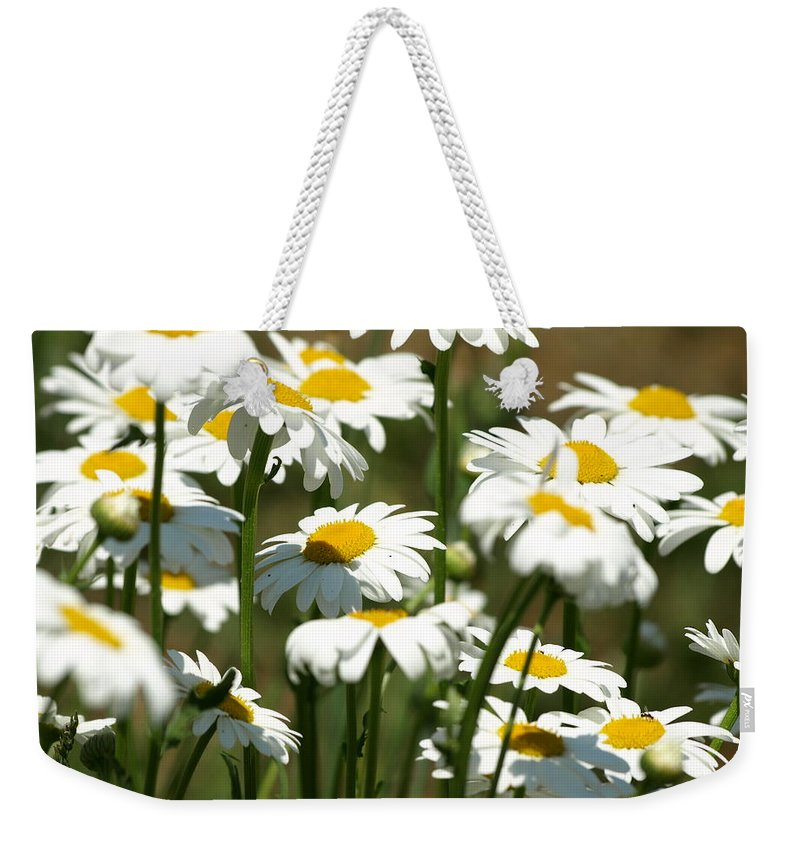 Flowers Weekender Tote Bag featuring the photograph A Daisy A Day by DeeLon Merritt