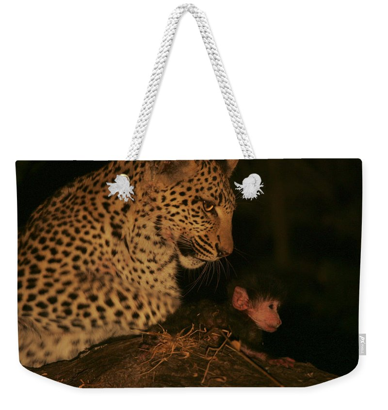 Okavango Delta Weekender Tote Bag featuring the photograph A Day-old Baboon Befriends A Young by Beverly Joubert