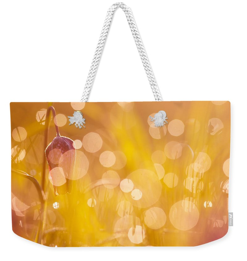 Nature Weekender Tote Bag featuring the photograph A Fairies Place IIi - Chess Flower by Roeselien Raimond