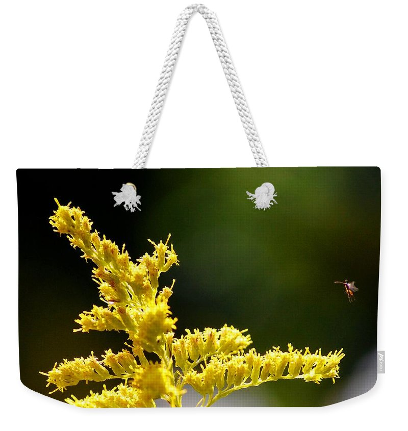 Digital Photograph Weekender Tote Bag featuring the photograph A Fairy Makes A Landing. by David Lane