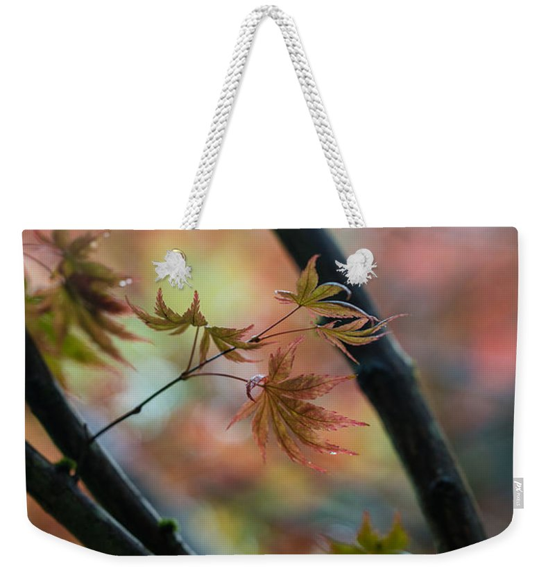 Fall Colors Weekender Tote Bag featuring the photograph A Falls Colors by Mike Reid