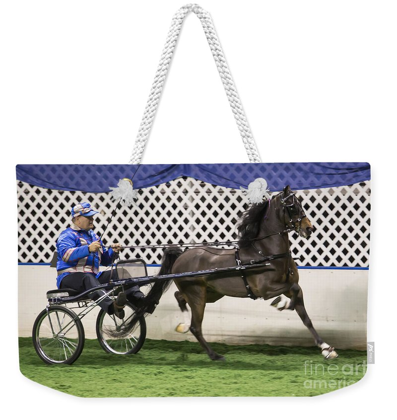 Flashy Weekender Tote Bag featuring the photograph A Flashy Pony by Lynn Sprowl