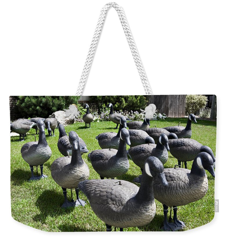 Wildlife Weekender Tote Bag featuring the photograph A Flock Of Decoys by Marilyn Hunt