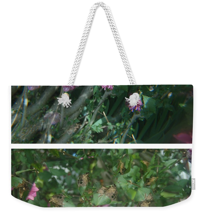 Abstract Weekender Tote Bag featuring the photograph A Flys View Of A Flower by Alwyn Glasgow