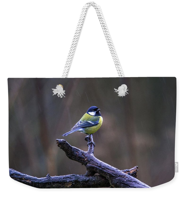 Great Tit Weekender Tote Bag featuring the photograph A Great Tit In The Rain by Stephen Jenkins