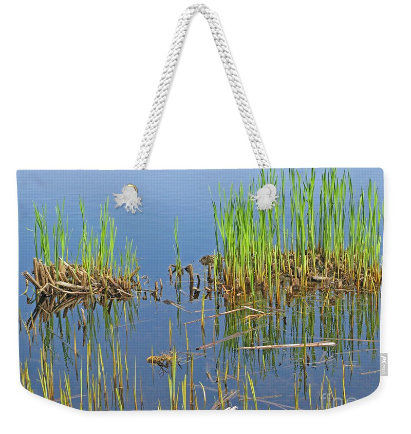 Spring Weekender Tote Bag featuring the photograph A Greening Marshland by Ann Horn