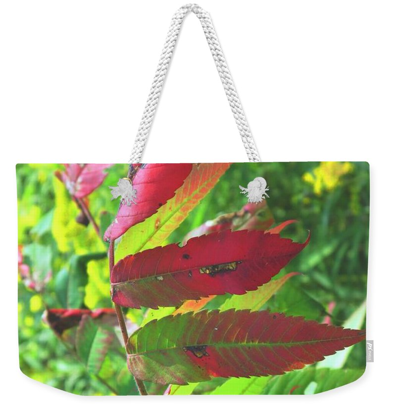 Leaves Weekender Tote Bag featuring the photograph A Hard Tough Summer by Ian MacDonald