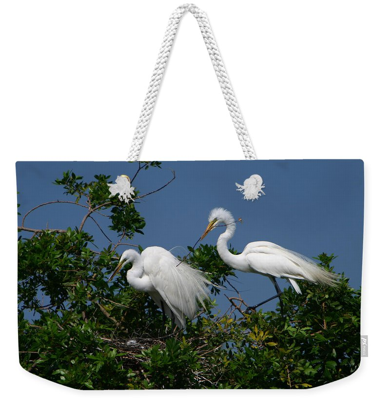 Great White Egret Bird Feathers Animal Wildlife Florida Photograph Photography Weekender Tote Bag featuring the photograph A Helping Beak by Shari Jardina