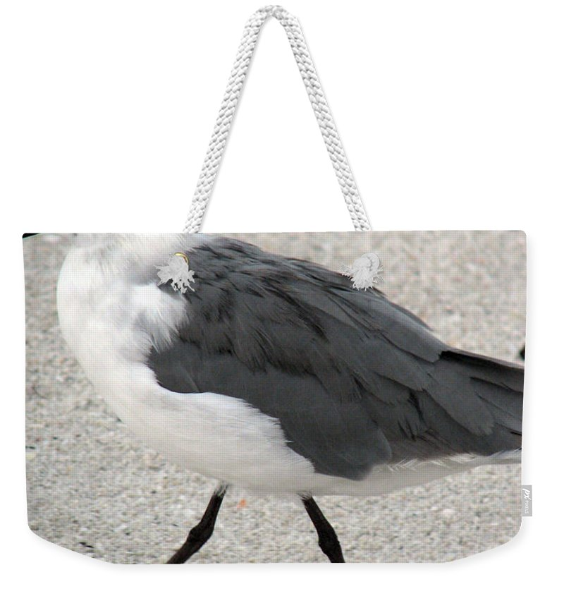 Seagulls Weekender Tote Bag featuring the photograph A Late Summer Walk by Amanda Barcon