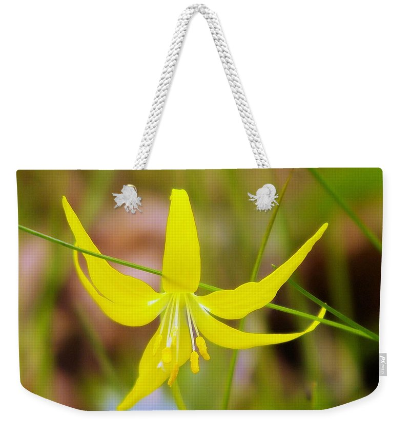 Lilies Weekender Tote Bag featuring the photograph A Lilly In Bloom by Jeff Swan