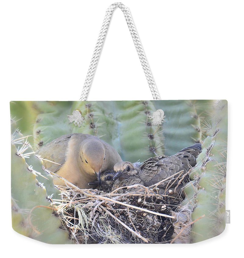 Mourning Dove Weekender Tote Bag featuring the photograph A Mother's Love by Saija Lehtonen