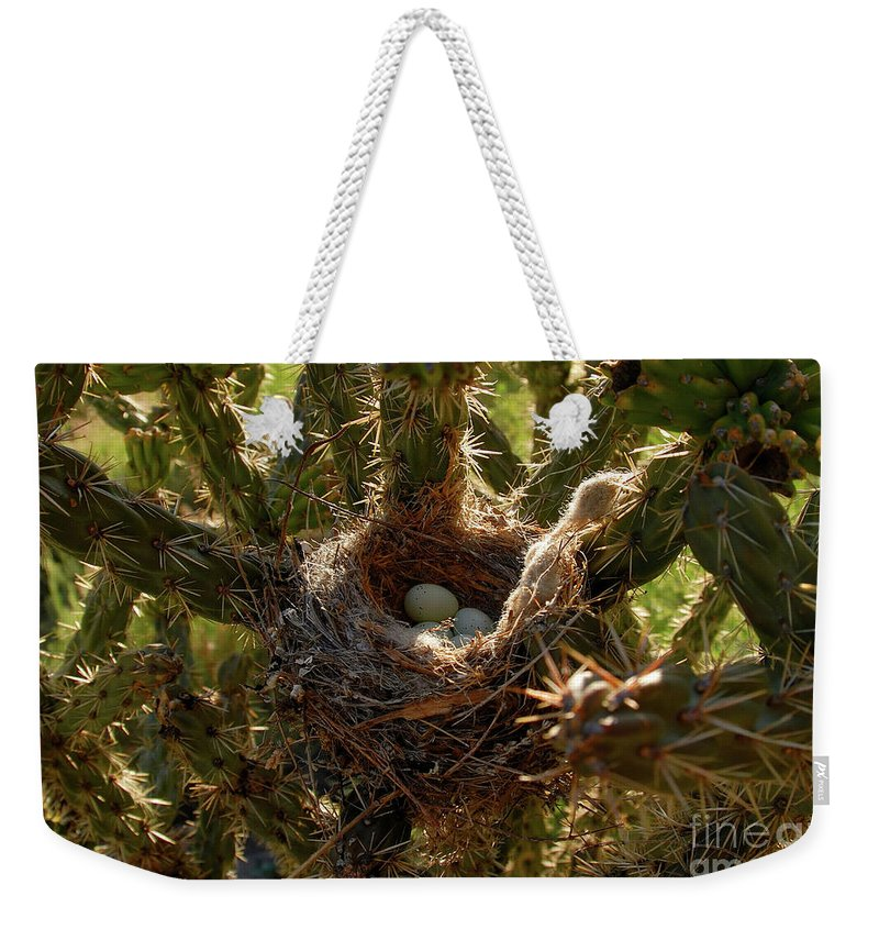 Fine Art Photography Weekender Tote Bag featuring the photograph A Mothers Protection by David Lee Thompson
