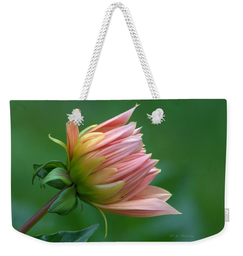 Dahlia Weekender Tote Bag featuring the photograph A New Beginning by Jeanette C Landstrom