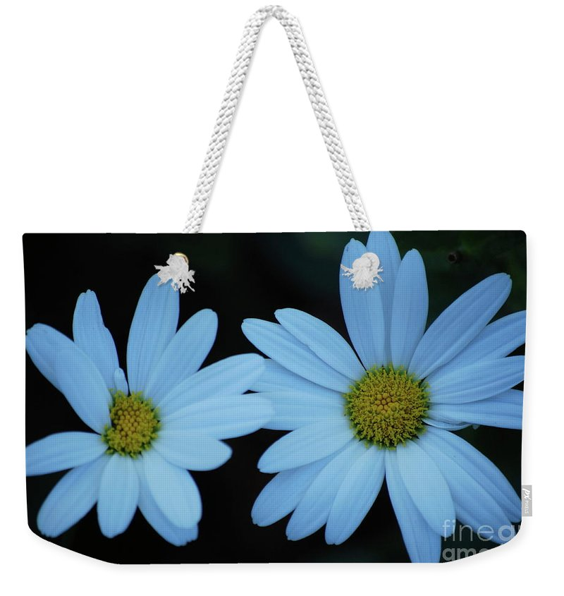 Daisy Weekender Tote Bag featuring the photograph A Pair Of Daisies by Lori Tambakis