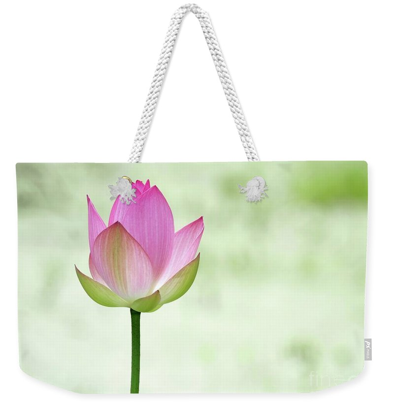 Lotus Weekender Tote Bag featuring the photograph A Pink Lotus by Sabrina L Ryan