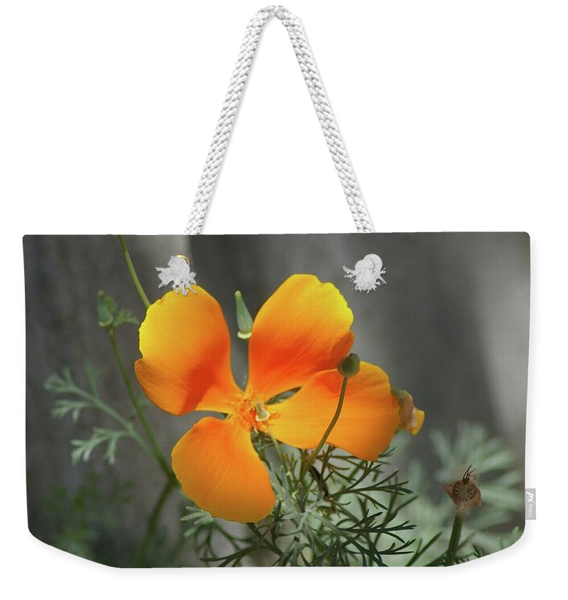 Floral Weekender Tote Bag featuring the photograph A Poppy Unfurled by Jeff Swan