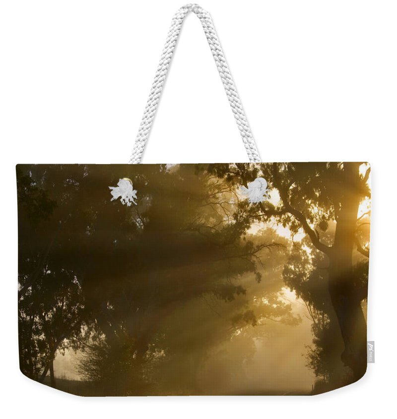 Highway Weekender Tote Bag featuring the photograph A Road Less Traveled by Mike Dawson
