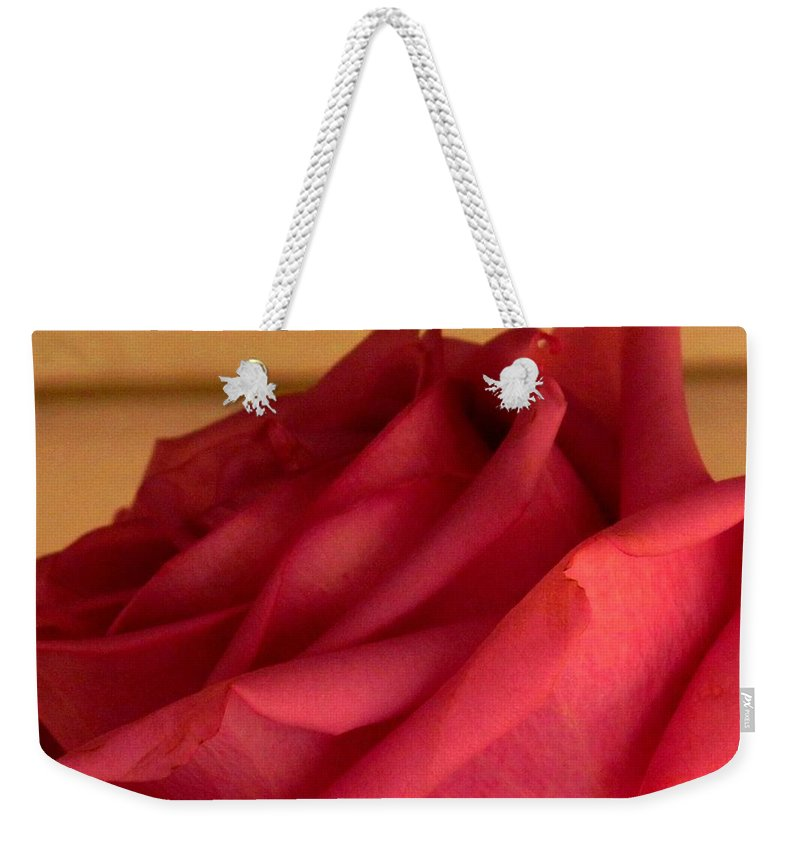 Rose Weekender Tote Bag featuring the photograph A Rose In Horizonal by Ian MacDonald