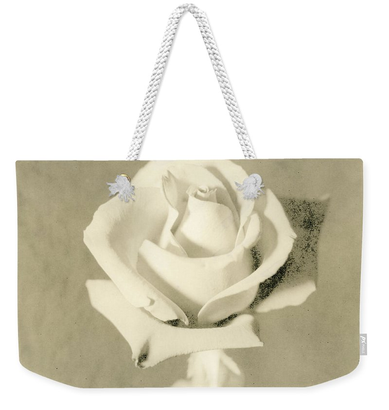 Rose Weekender Tote Bag featuring the photograph A Rose Of Alternate Processed by John Harmon
