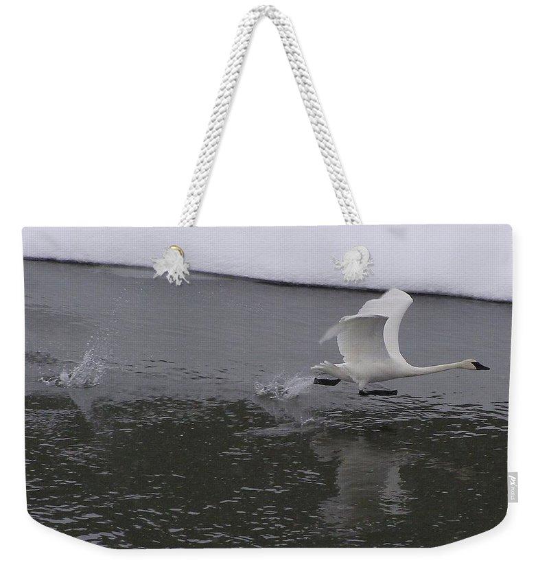 Bird Weekender Tote Bag featuring the photograph A Running Start by DeeLon Merritt