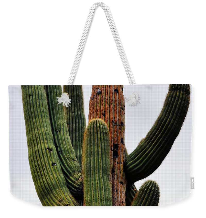 Saguaro National Park Weekender Tote Bag featuring the photograph A Saguaro Afternoon by Kyle Hanson