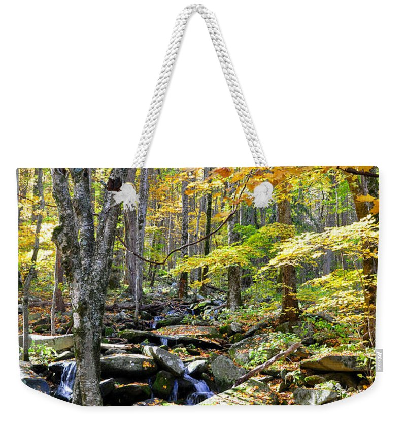 Smokey Mountain Weekender Tote Bag featuring the photograph A Smokey Mountain Stream by Brittany Horton