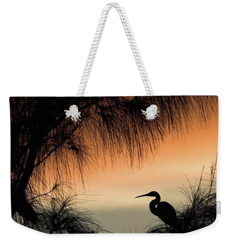 Egret Weekender Tote Bag featuring the photograph A Snowy Egret (egretta Thula) Settling by John Edwards