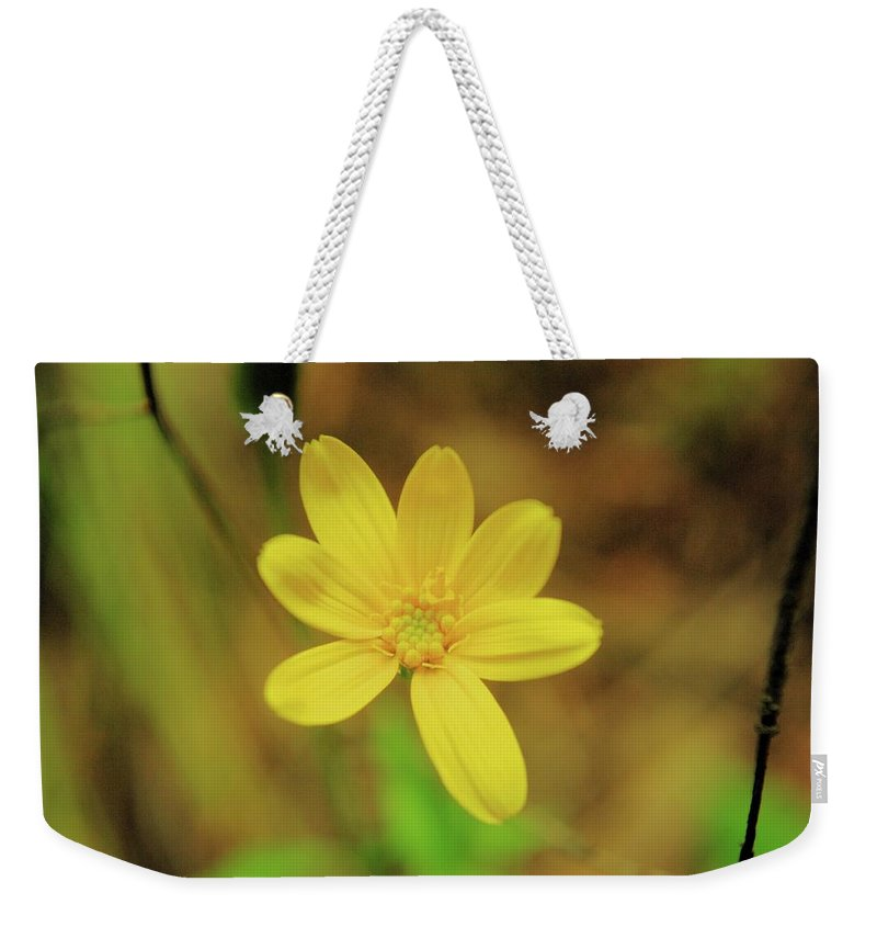 Flowers Weekender Tote Bag featuring the photograph A Soft Yellow Flower by Jeff Swan