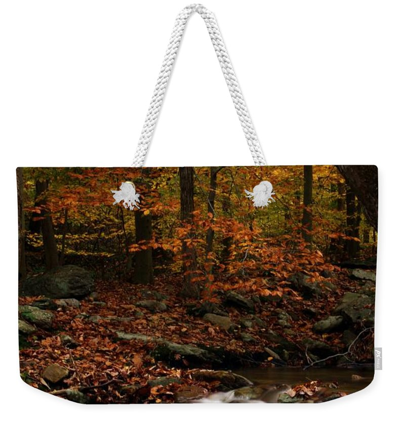 Autumn Weekender Tote Bag featuring the photograph A Spectacle by Mitch Cat