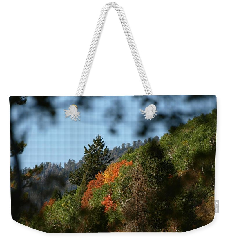 Fall Weekender Tote Bag featuring the photograph A Spot Of Fall by DeeLon Merritt