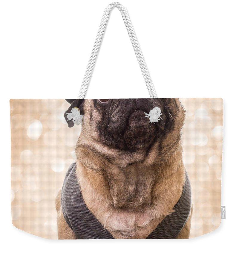 Pug Weekender Tote Bags