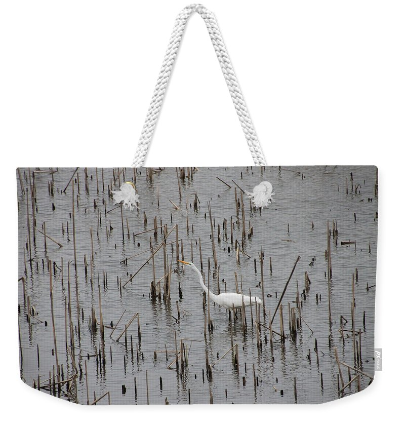 Bird Weekender Tote Bag featuring the photograph A Stroll Through The Marsh by Laura Martin