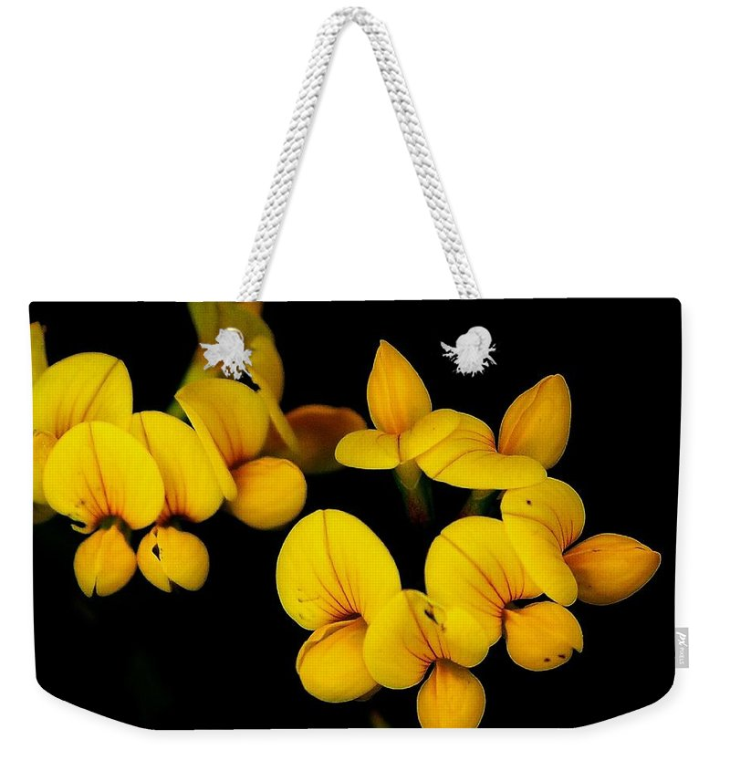 Digital Photography Weekender Tote Bag featuring the photograph A Study In Yellow by David Lane