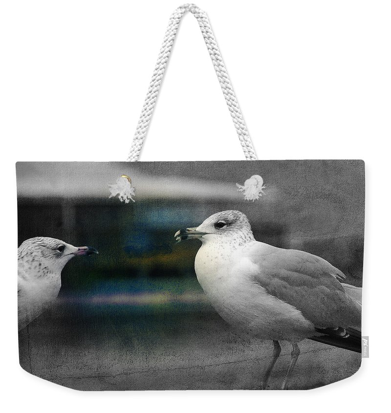 Two Seagulls Weekender Tote Bag featuring the photograph A Touch Of Blue by Susanne Van Hulst