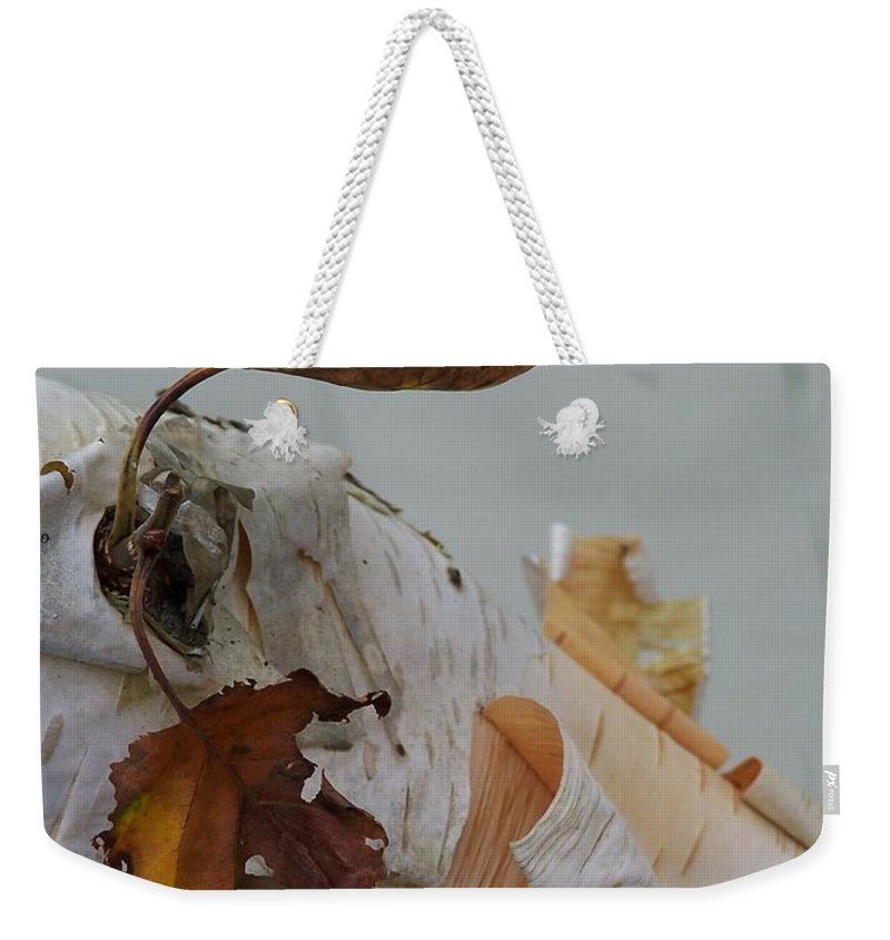 Birch Weekender Tote Bag featuring the photograph A Touch Of Fall by Gale Cochran-Smith