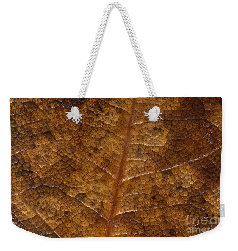 Leaves Weekender Tote Bag featuring the photograph A Touch Of Fall by Richard Rizzo
