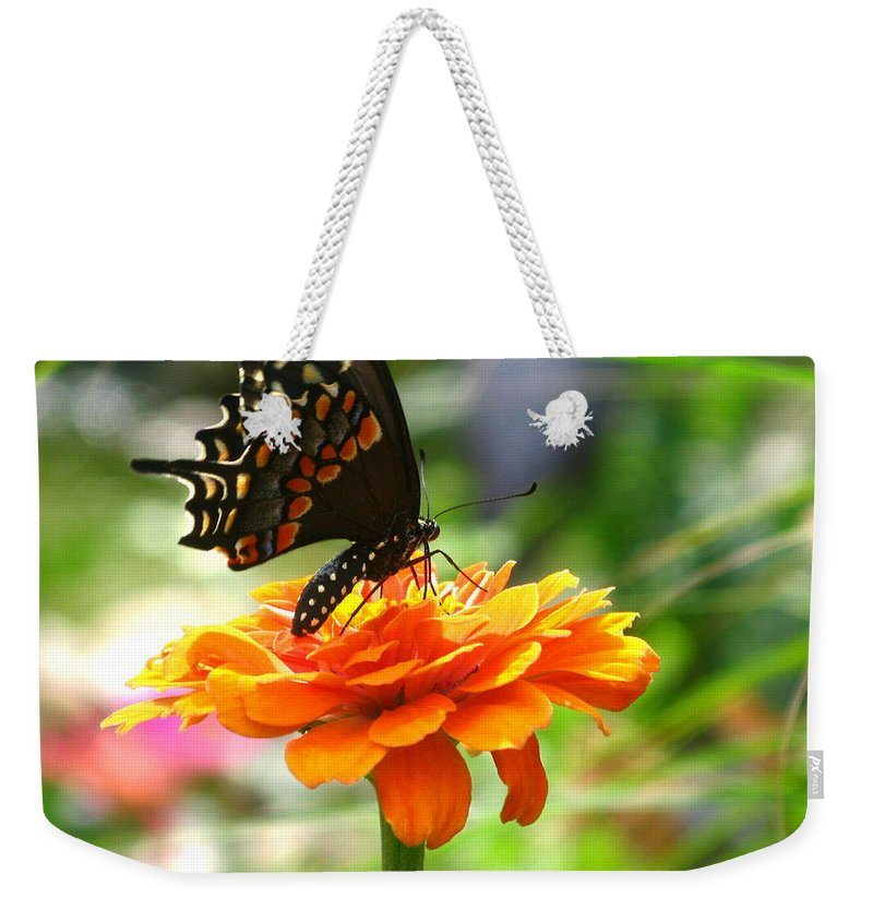 Summer Weekender Tote Bag featuring the photograph A Touch Of Summer's End by Brittany Horton