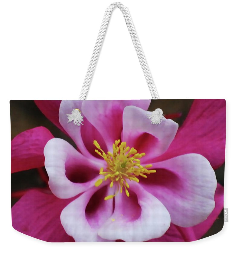 Columbine Weekender Tote Bag featuring the photograph A Touch Of Yellow by Lori Tambakis