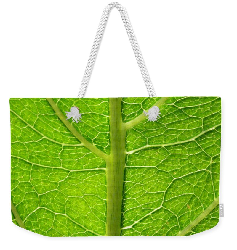Leaf Weekender Tote Bag featuring the photograph A Tree Within by Donna Blackhall