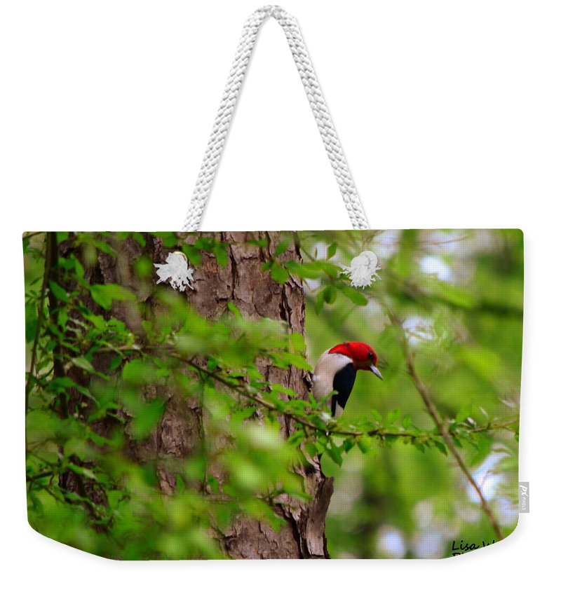 Red Headed Woodpeckers Weekender Tote Bag featuring the photograph A True Red Head by Lisa Wooten