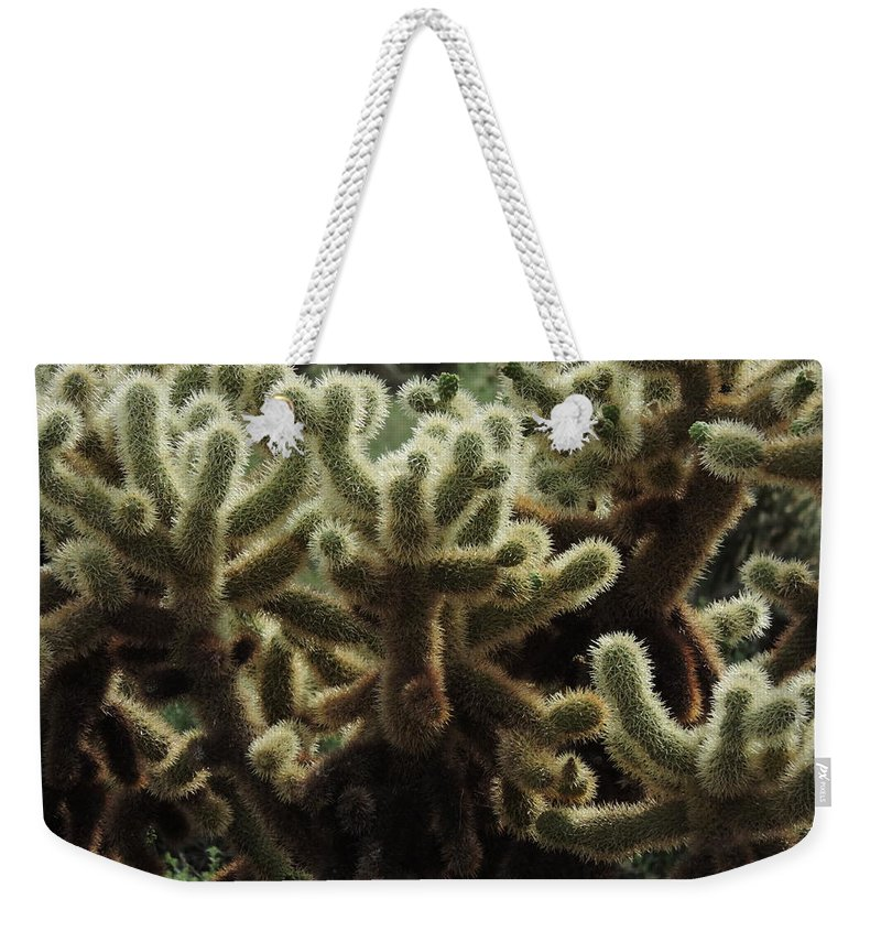 Sonoran Desert Weekender Tote Bag featuring the photograph A Very Prickly Situation by Bill Tomsa
